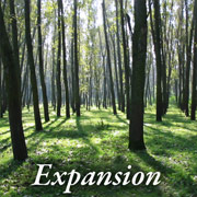 Expansion_05
